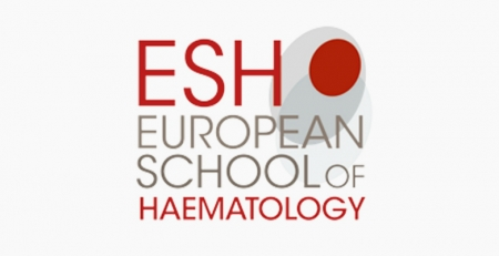 Tumor hematológico é foco de Workshop Científico da European School of Haematology